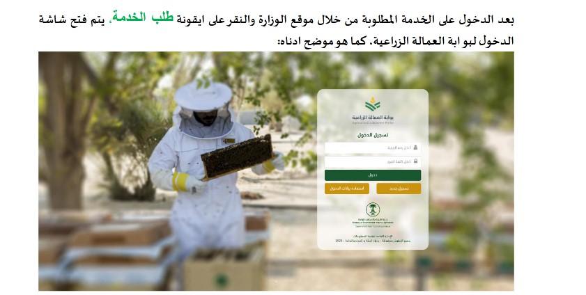 طريقة وشروط التسجيل في بوابة العمالة الزراعية للأفراد 1442